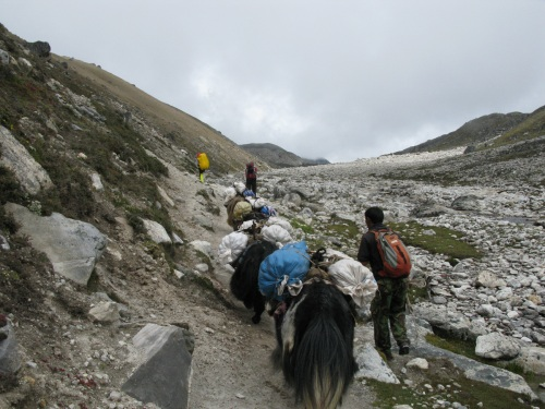 Everest Base Camp Trek- Trail